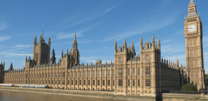 The UK Chiropractors Act, 1994 - Story of a legislative campaign