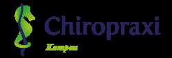 Chiropractie Kampen BV